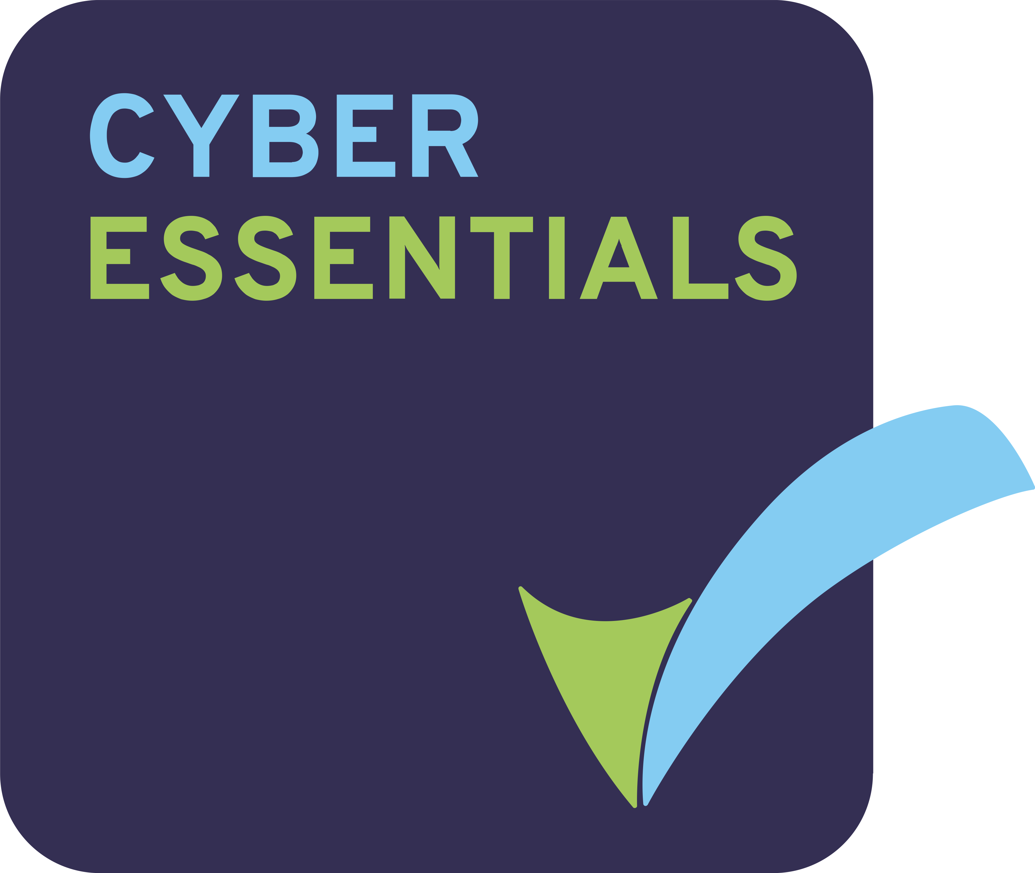 Cyber Essentials Badge High Res 3